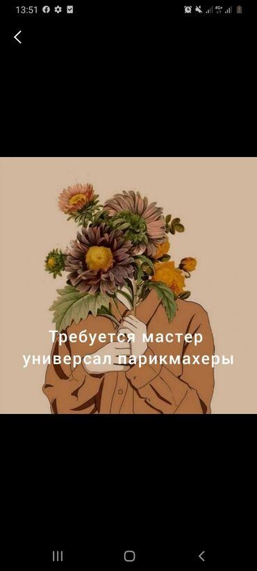 Расческа выпрямитель fast hair straightener - Кыргызстан: Срочно требуется мастер универсал парикмахеры с опыт институт