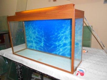 Bakı şəhərində teze akvarium uzunu 70 sm hundurluyu qapaqla 45smeni 20