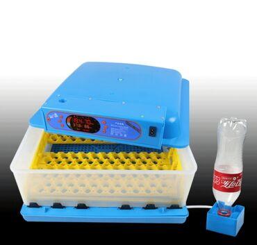 Zəmanətli və qarantili inkubatorlar bizdə👍ən müasir mini