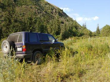 Isuzu - Кыргызстан: Isuzu Bighorn 3.2 л. 1997 | 182618 км