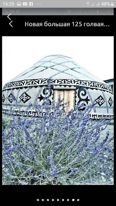 голые в Кыргызстан: Продаются большие юрты новые. 125 головые, 14 канатные диаметром 9