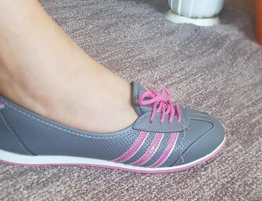Ženska patike i atletske cipele | Pirot: Odlicne patikice za jesen/prolece broj 38