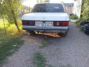Транспорт - Новопокровка: Mercedes-Benz W123 2.4 л. 1979