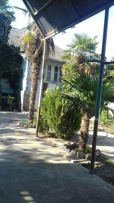 Недвижимость - Билясувар: Продам Дом 176 кв. м, 3 комнаты