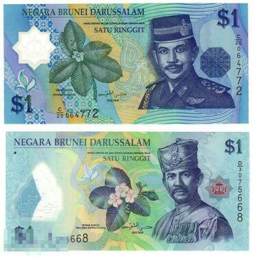 Банкноты . Бруней . Сьерра Леоне. Коста Рика. Эквадор. Индия