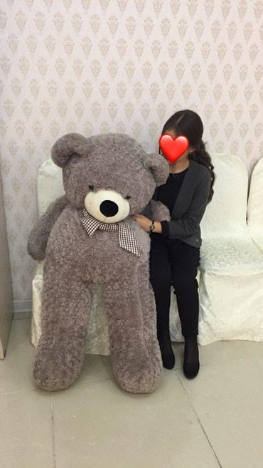 шкуры медведя в Кыргызстан: Продаю плюшевого медведя 1.40-1.50 абсолютно новый стоит 5000 сом