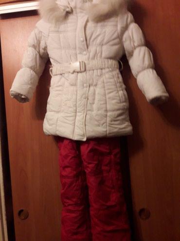 Продаю зимний костюм на девочку с 7 до в Лебединовка