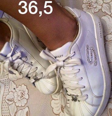 детские теннисные кроссовки в Азербайджан: Кроссовки skitchers оригинал размер 36,5 привозные