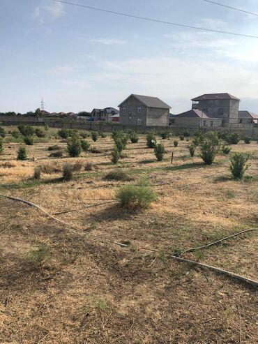 Torpaq sahəsi satılır 120 sot Kənd təsərrüfatı, Mülkiyyətçi, Kupça (Çıxarış)