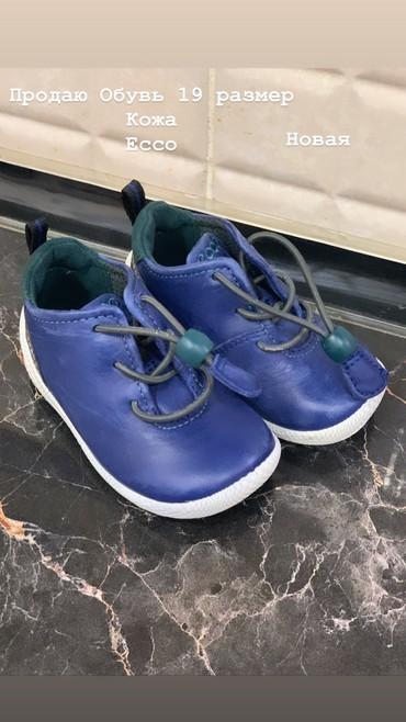 спортивную обувь ecco в Кыргызстан: Продаю кожанную обувь Новая Ecco (оригинал) Размер: 19