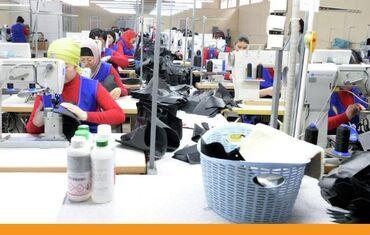 Семейный пар бишкек - Кыргызстан: Работа в России! Требуются работники на швейную фабрику (семейные