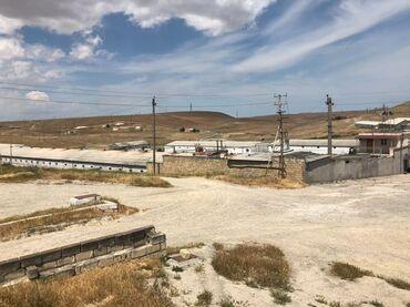 ferma satilir 2020 in Azərbaycan   KOMMERSIYA DAŞINMAZ ƏMLAKININ SATIŞI: 1.7 hektar sahede ferma satilirQusculuq gobelek ve parnik var