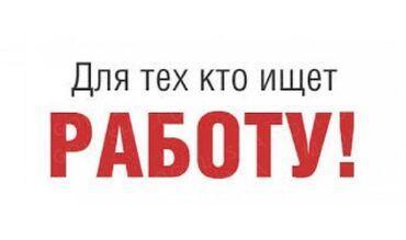 alfa romeo gtv 18 mt в Кыргызстан: Продавец-консультант. Без опыта. Сменный график