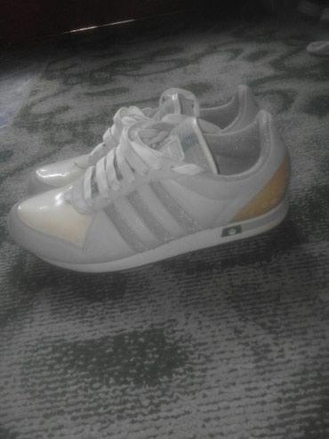Ženska patike i atletske cipele | Kragujevac: Adidas br.40.Royal limited serija
