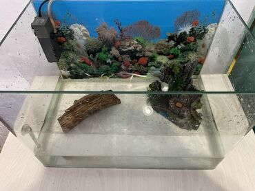 рыбки в Кыргызстан: Аквариум, автоматика кислорода, градусник, замок и мост из