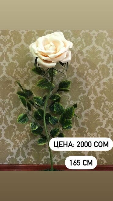 дом из сруба бишкек цена in Кыргызстан   ОТДЫХ НА ИССЫК-КУЛЕ: Представляем вашему вниманию декоративные, большие, красивые цветы-све