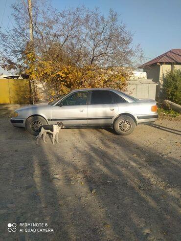 Audi 2.3 л. 1991 | 36000 км