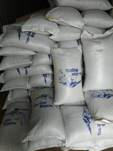 Форелевое хозяйство реализует в Кара-Балта