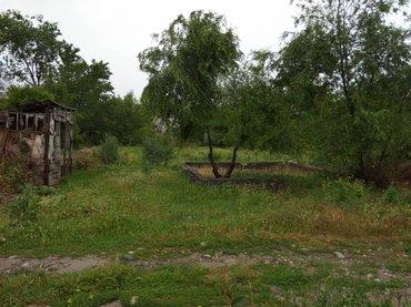 Срочно продаю дачный участок земли. в Лебединовка