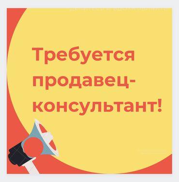 Работа - Кыргызстан: Продавец-консультант. Без опыта. 5/2