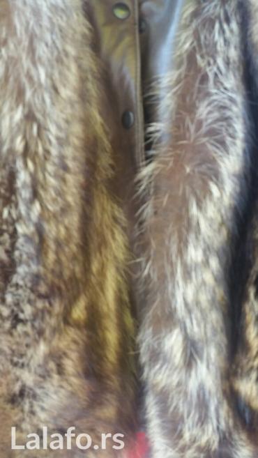 Prirodno krzno 5 ledja rakuna koza jakne italy - Beograd
