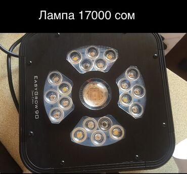 Лед светильник Аэратор для гидропоники Ведро для гидропоники 500