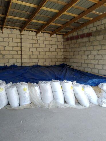 Ev və bağ Qusarda: Buğda satılır hardasa 8 ton temiz normal şekiller satılan buğdaya