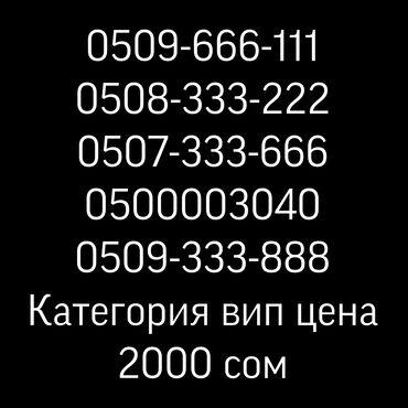 Карты памяти patriot для видеокамеры - Кыргызстан: Красивые номера от мобильного оператора о