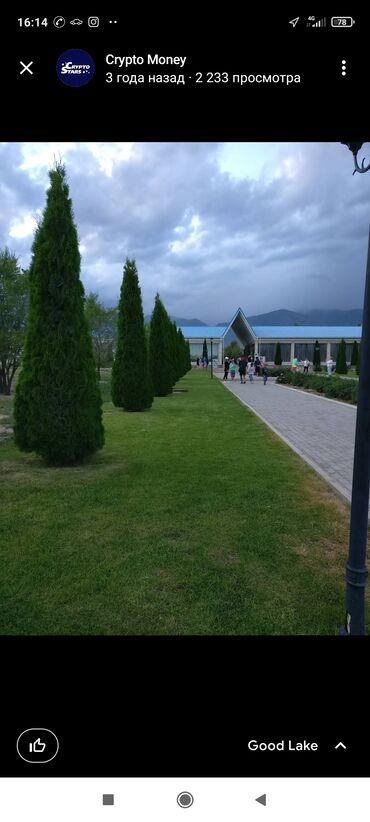 дом на иссык куле купить в Кыргызстан: 77 кв. м 3 комнаты