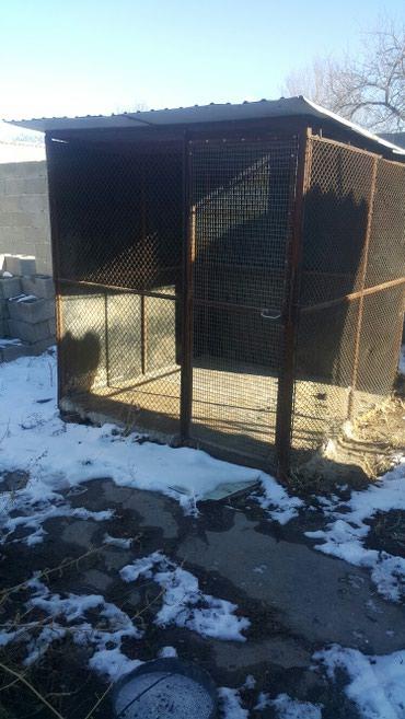 вольер для щенков в Кыргызстан: Вольер для собак 2×2 высота 2м