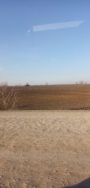 Torpaq sahələrinin satışı - Xudat: Torpaq sahələrinin satışı 30000 sot Kənd təsərrüfatı, Mülkiyyətçi