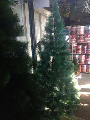 мизопростол цена в бишкеке в Кыргызстан: Ёлка.новогодняя ёлка БишкекВысота 210 см Акционная цена!Цена