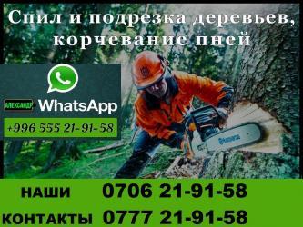 Бытовые услуги в Кыргызстан: Спил деревьев любой сложности а также распиловка деревьев на