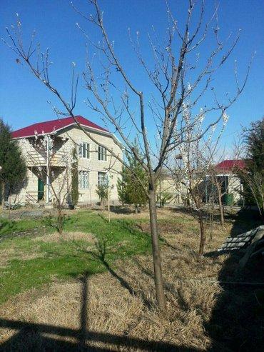 Недвижимость - Балакен: Продам 16 соток Для сельского хозяйства от собственника
