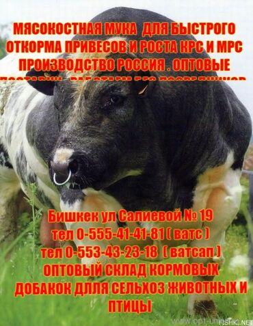 животн в Кыргызстан: Мясокостная Российская мука - привесы крс мрс птицы . Белок животного