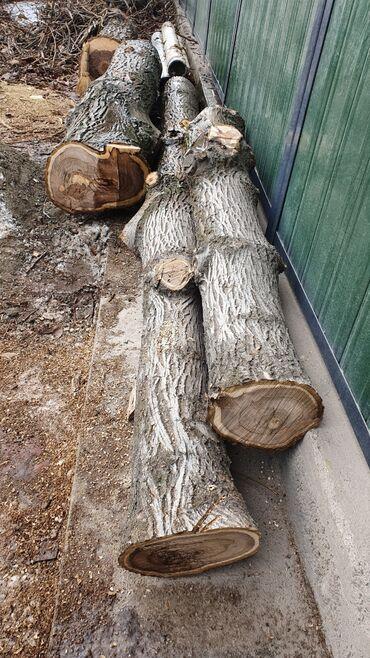 Пиломатериалы, фанера - Сокулук: Доски | Листовые деревья