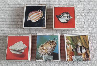 Τέχνη και Συλλογές - Ελλαδα: 5 σπιρτόκουτα από ΙταλίαΤα 2 είναι αχρησιμοποίητα με την ταινία τουςΤα