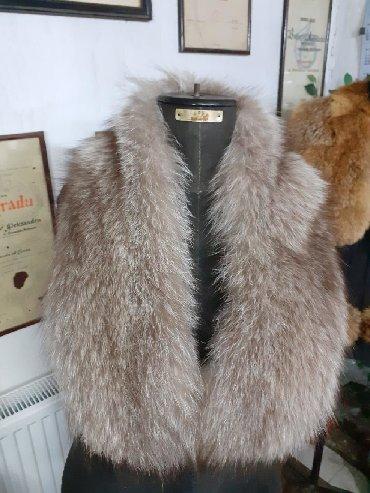 Krzno - Srbija: Kragna od finskog rakuna  Prirodno krzno
