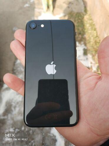 карты памяти sd для телефонов в Кыргызстан: Новый iPhone SE 2020 64 ГБ Черный (Jet Black)