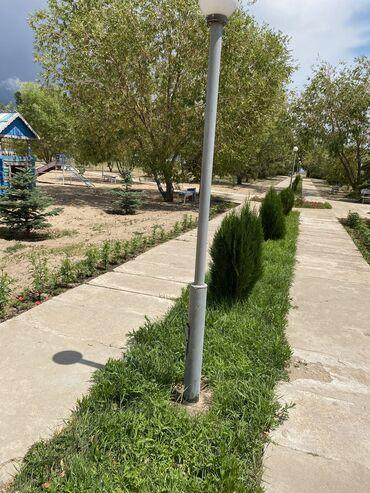 строительства в Кыргызстан: Продам 260 соток Для бизнеса от собственника