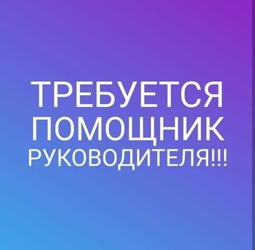 Пом.рук!(с высшим образованием) в Бишкек