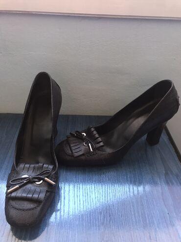 Prada cipele original - Srbija: TOD'S cipele (original)
