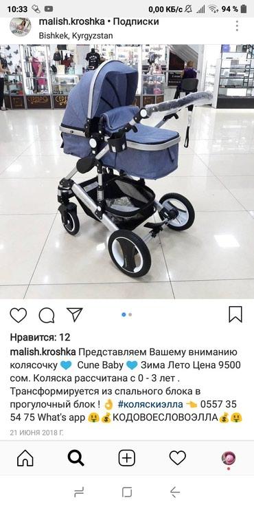 Продаю коляску зима/лето в идеальном в Бишкек