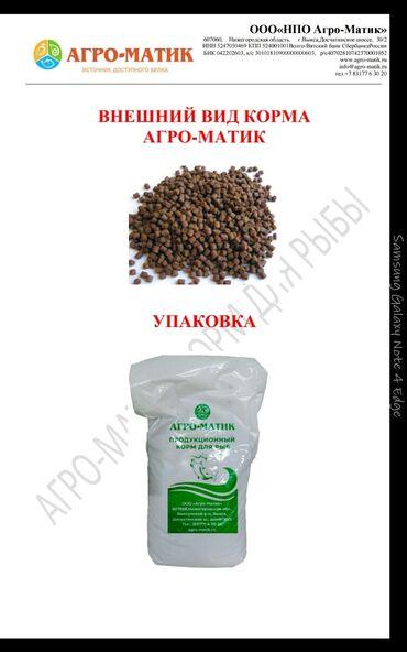 манго фрукт цена бишкек в Кыргызстан: В наличии корм для форели российского производства высшего качества