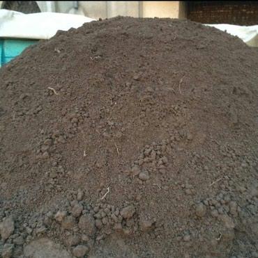 Чернозем чистый без мусора для клумб и газона в Бишкек