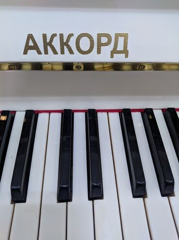 Piano kurslari bakida - Азербайджан: Bakida balaca həcmli Akkord Piano Satilir