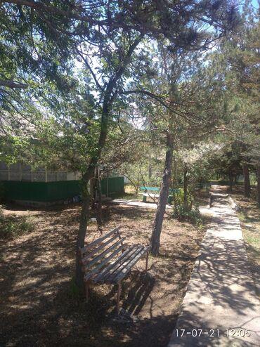 Отдых на Иссык-Куле - Бостери: Номер, Туран Ази Бостери, Парковка, стоянка