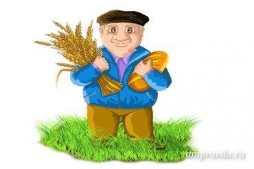 Требуется агроном на фирму в Бишкек