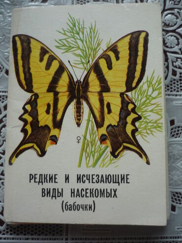 Набор открыток Редкие и исчезающие виды насекомых АССР.24 открытки с