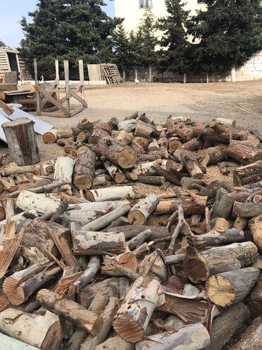 Kömür, odun - Azərbaycan: Tam qurudulmus kotuklar